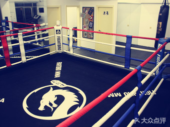 UNIVERSAL 天行健搏击散打健身摔跤俱乐部