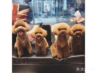 Oh My Dog宠物沙龙(源深店)