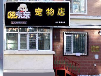 晓东东宠物店(阳光家园店)